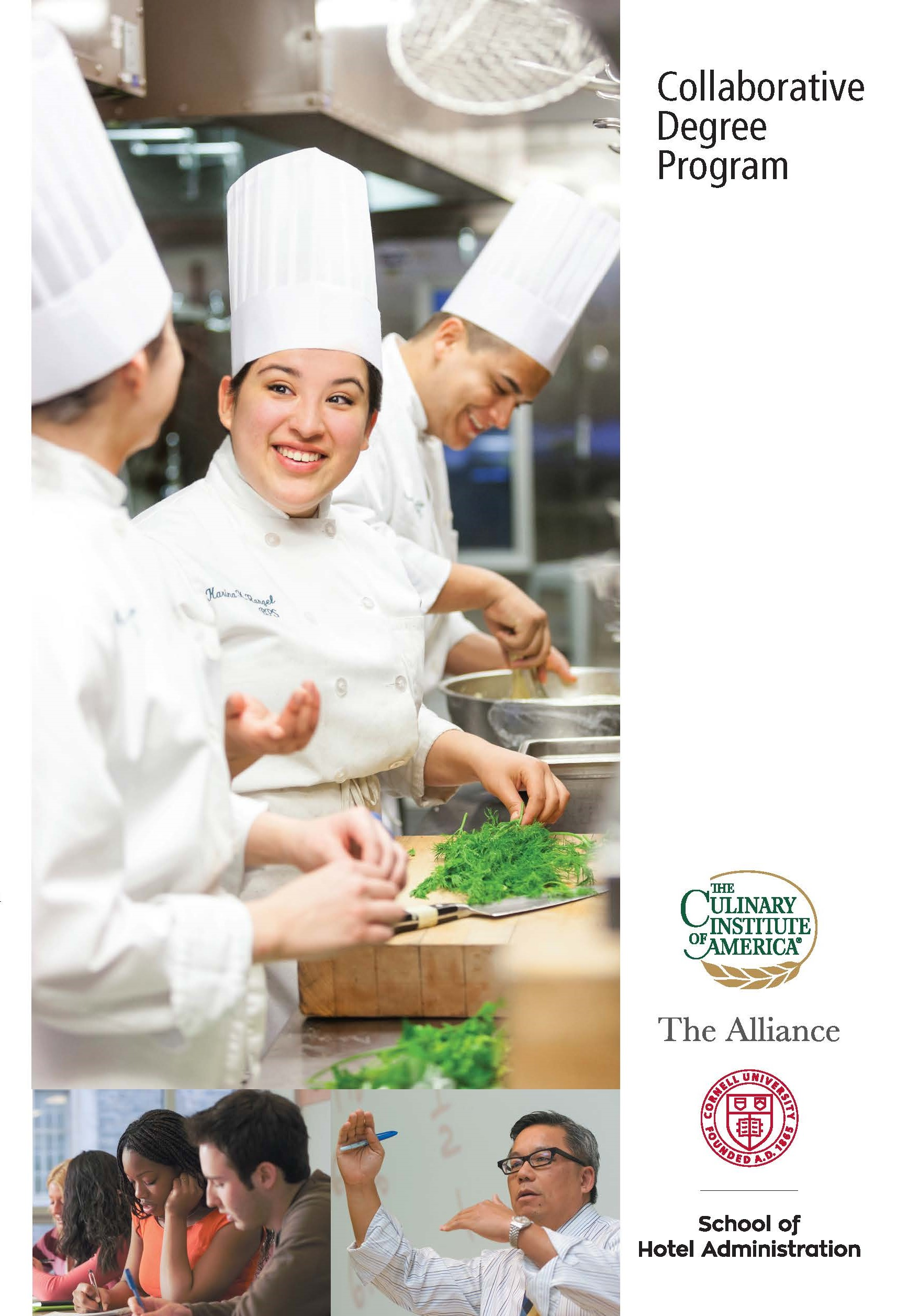 informative essays about culinary Cultural studies essays - culture, food and eating cultural 2001, isthere a culinary skills transition data and debate from the uk about changes in.