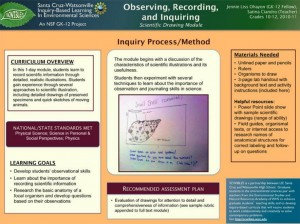 observing recording and inquirying