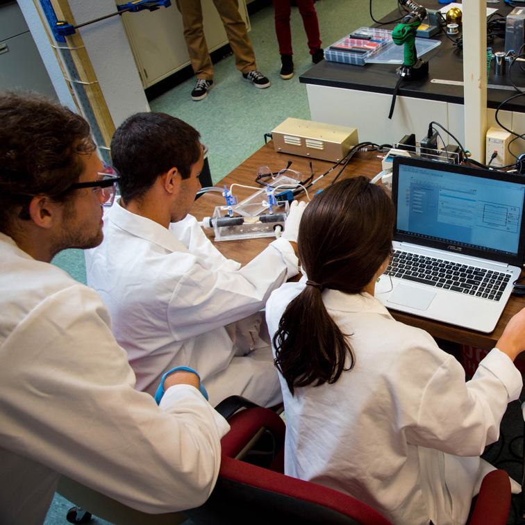 students in a biomedical engineering lab